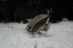 jakuszyce_przyczepka_dla_dzieci_chariot_coguar_gondola
